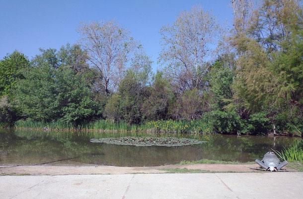 Al entrar al parque  lo primero que nos encontramos  es con el Lago.