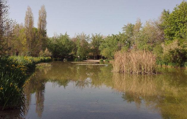 El lago desde otra posición