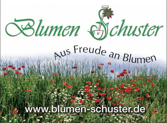 Blumen Schuster