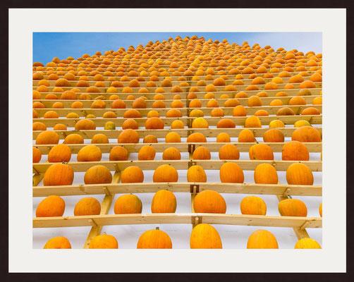 Pumpkin Art, Ludwigsburg