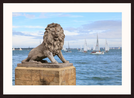 English Lion, Isle of Wight