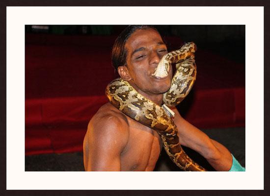 Snake Man, Kannan Devan Hills, Munnar, Kerala