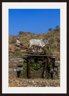 Traditional Watering, Kamba, Rajasthan