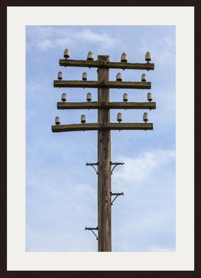 Electricity Pole, Durham County