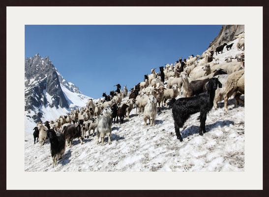Hampta Pass, Himachal Pradesh, Indien