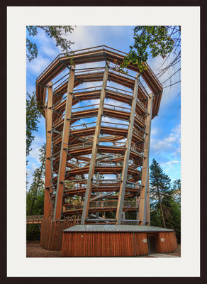 Treetop Tower, Bad Wildbad