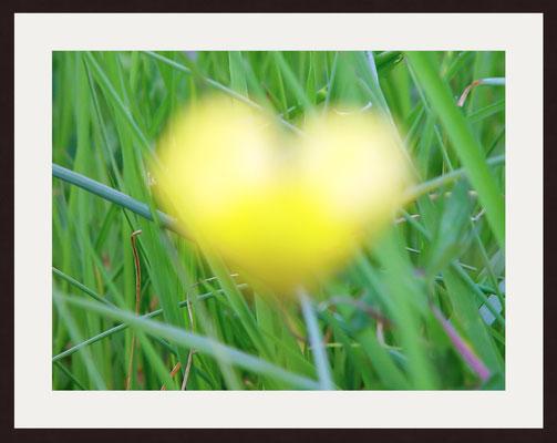 Goldenes Herz, Birkenfeld