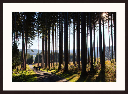 Black Forest, Furtwangen