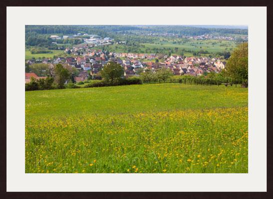 Buttercups, Graefenhausen
