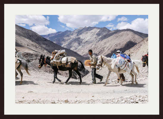 Trekking, Ladakh, Jammu & Kashmir