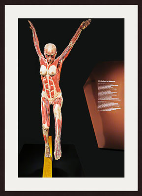 Bodyworld, Berlin