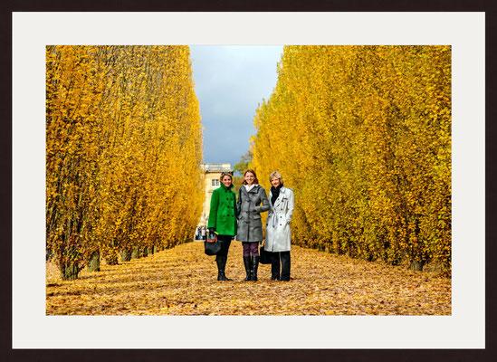 Castle Park, Versailles