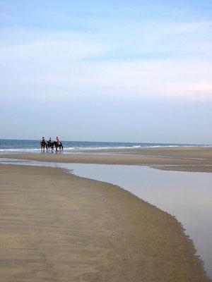 Norderney Strandausritt - immer ein ganz besonderes Erlebnis