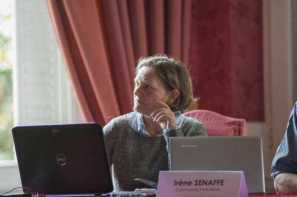 Irène SENAFFE Directrice de l'UGS