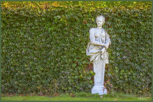 In Hecken verstecken :)/Hannover Herrenhausen