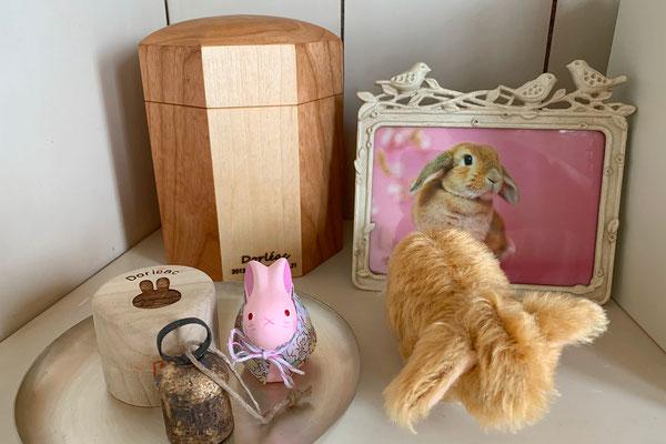 K様邸 ドルレアックちゃん(ウサギ)2.3号印籠タイプ アメリカンチェリー&メープル