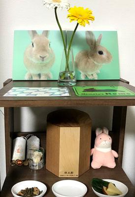 R様邸 桃太郎君(ウサギ)3号寸 メープル&クルミ