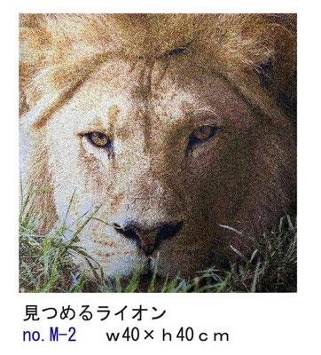ファブリックパネル 見つめるライオンno.M-2