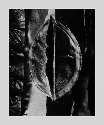Untitled 248, 1998