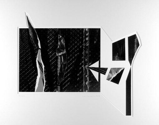 Krupa, 2013 (Collage)