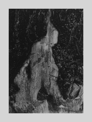 Trunk Figure or Kneeling Wood Ghost, Ipswich, Mass., (B211), 1961