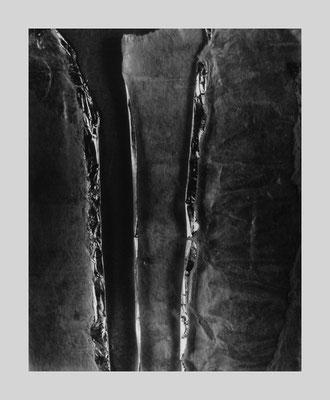 Woods 481, 1983