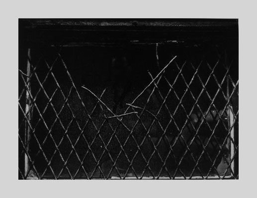 Wire Fence Interrupted, Boston (A132), 1958