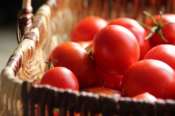 """""""Ne jetez pas de tomates ....""""  sur  Delphine Vandevondelle"""
