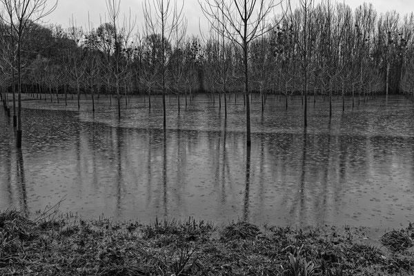 """"""" Les pieds dans l'eau """"  cliché réalisé par Joël"""