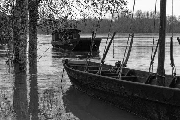 """""""La Loire à Candes St Martin""""  cliché  réalisé  par  Joël"""