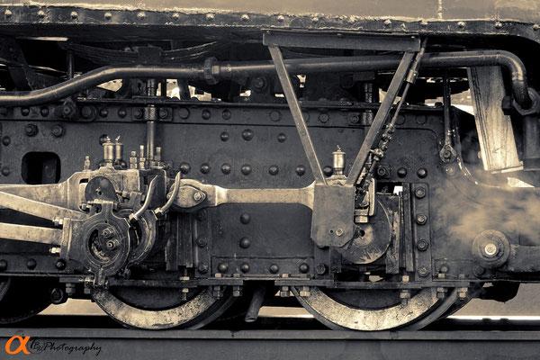 "Thierry  a pris le   ""Polish Train"""