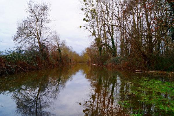 """""""  Route d'eau -Savigny en Véron  """"  cliché réalisé par  Fabienne"""