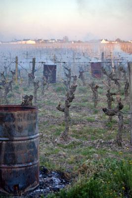 """""""Anti-gel sur le vignoble Bourgueillois""""  cliché réalisé par Jean-Claude"""