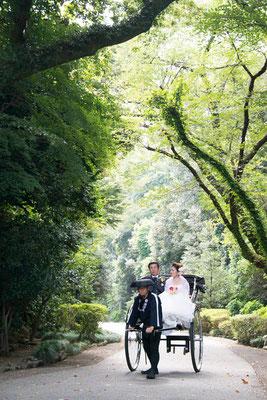 グリーントンネルと花嫁
