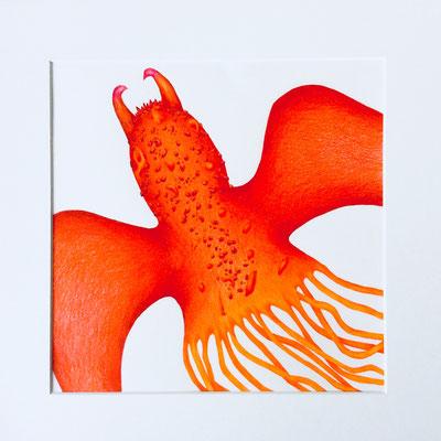 """Inge Marion Petersen, """"Wasserwesen II"""", Farbstifte auf Papier, 50x50 cm"""