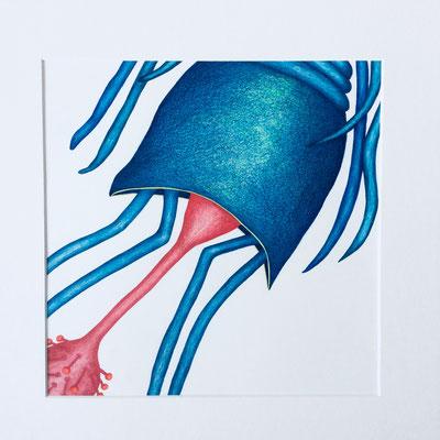 """Inge Marion Petersen, """"Wasserwesen I"""", Farbstifte auf Papier, 50x50 cm"""