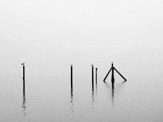 Andreas Warlich, o.T., Fotografie 1/10, 60x80 cm