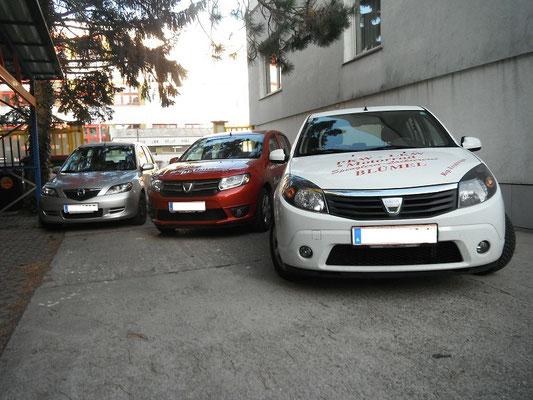 Reperaturersatzfahrzeuge (Dacia Sandero / Mazda 2)