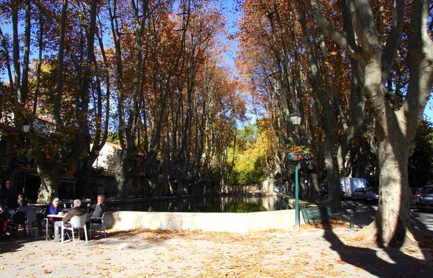 Bild: Herbst am Löschteich (Etang) in Cucuron, Vaucluse, Provence