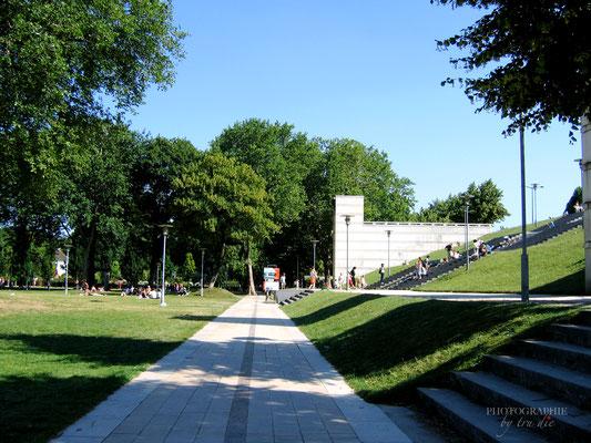 Bild: Rasenfläche im Park de Bercy