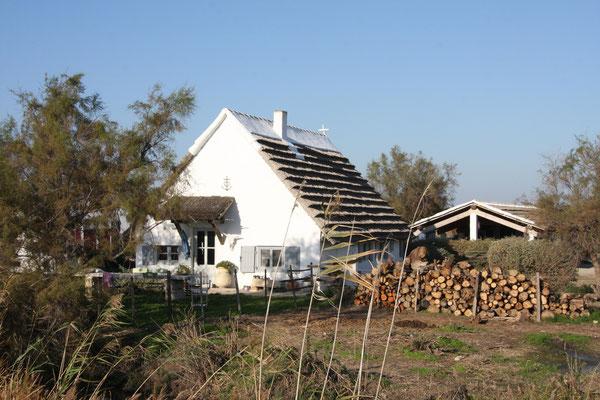 Bild: Bauernhaus in der Camargue