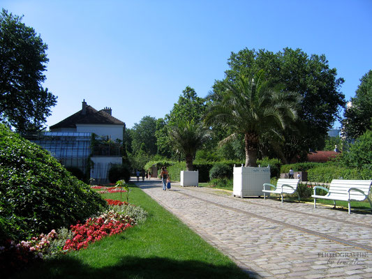 Bild: Impressionen aus dem Parc de Bercy in Paris