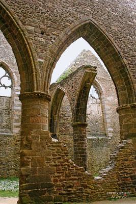 Bild: Abbaye Saint-Mathieu de Fine Terre
