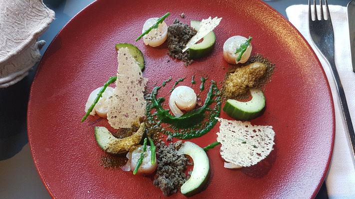 La Dorade facon gravlax, poudre d`oseille et concombres marinés (eine Vorspeise von zwei Möglichkeiten)