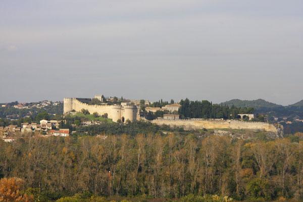 Bild: Chateau in Villeneuve-les-Avignon von Avignon aus