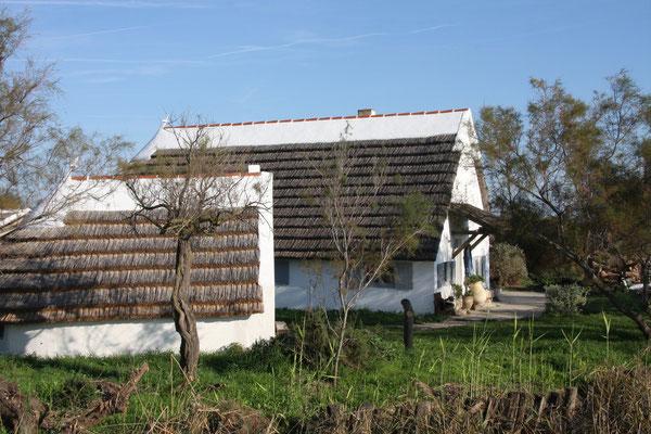 Bild: Bauernhaus der Camargue