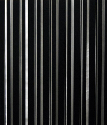 """""""I II IIIIIa"""", 70x100cm, Alu geschliffen, Acrylfarbe, 2007"""