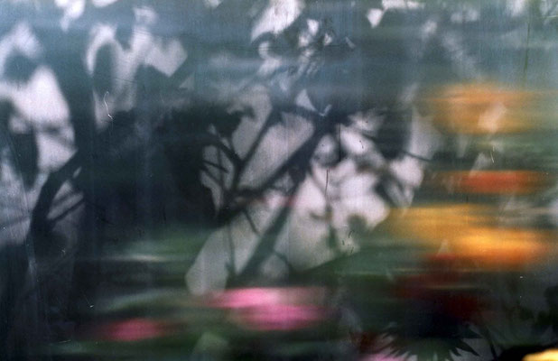 """""""you will find me if you want me in the garden unless it´s pouring down with rain N11"""", 2006, 75x50cm, D-Print auf Alu"""