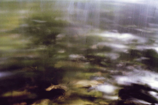 """you will find me if you want me in the garden unless it´s pouring down with rain N5"", 2006, 75x50cm, D-Print auf Alu"