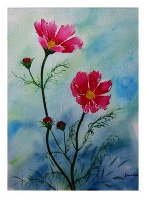 Sonnenblumenkörbchen